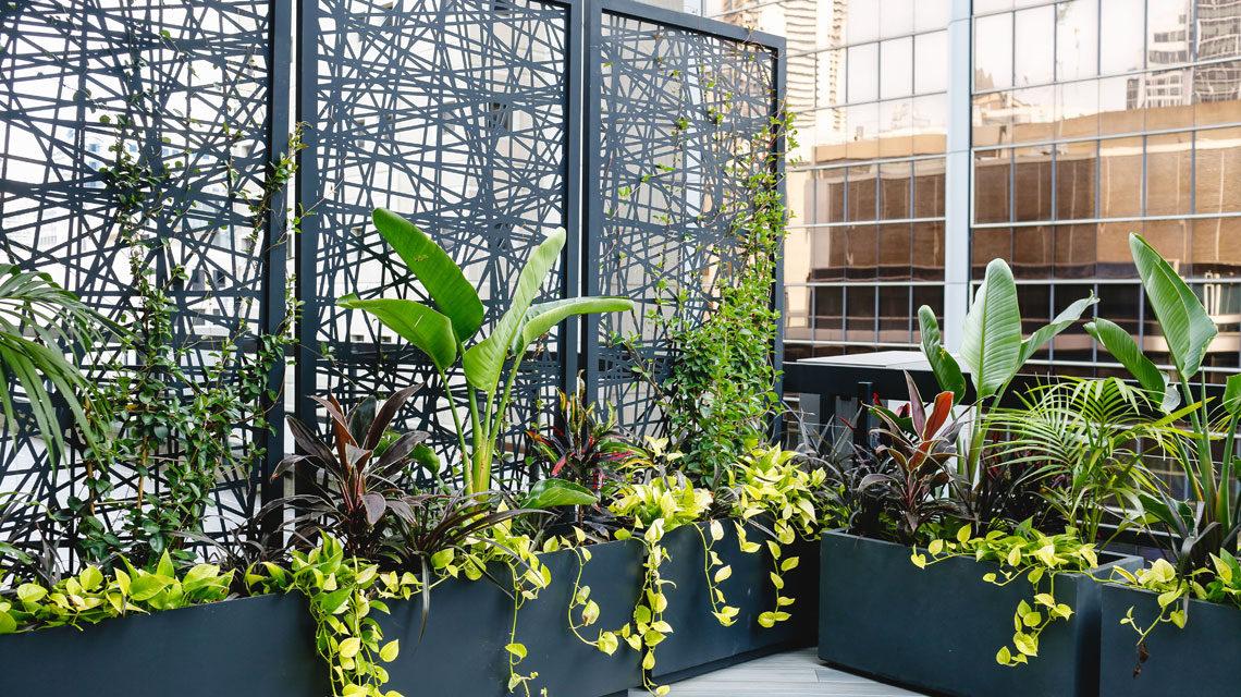tipalea-partners-greenwall-design-karina-crombie-kcreative-interiors